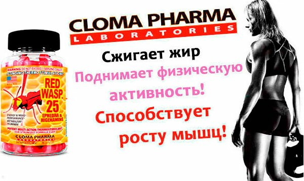 banner-Cloma-Red-Wasp