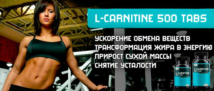 banner-optimum-nutrition-l-carnitine-500